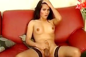 asian Ladytwink Solo