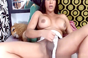 Big Breast Shemale Jerking Shaved Hot Dick