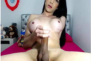 Big boobs hard cock Tgirl